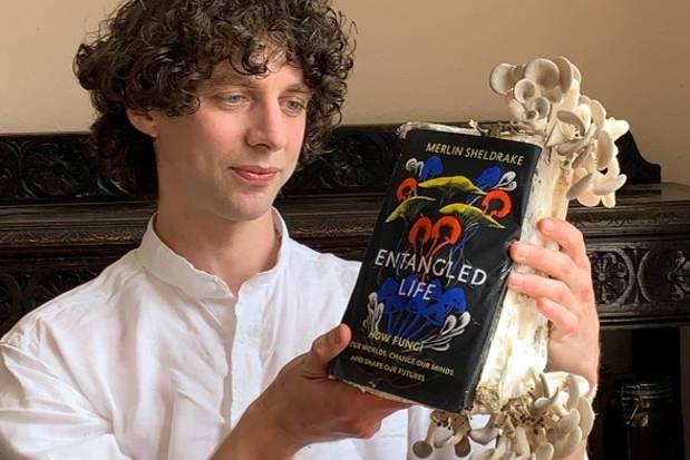 entangled_life-merlind-sheldrake