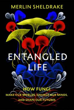 entangled_life-merlind-sheldrake